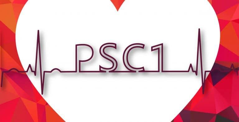 Formation PSC1 dans les Côtes-d'Armor